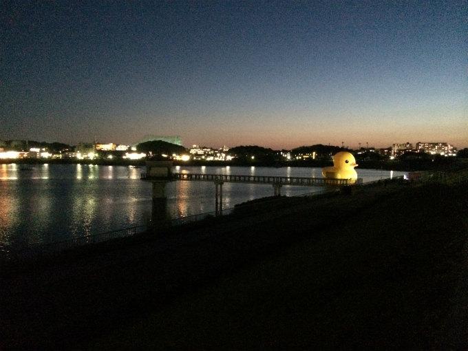 夜のラバーダック