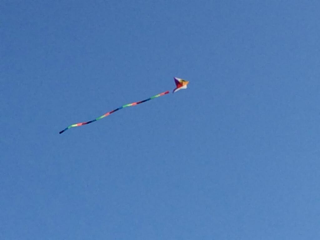 狭山池カラフル凧