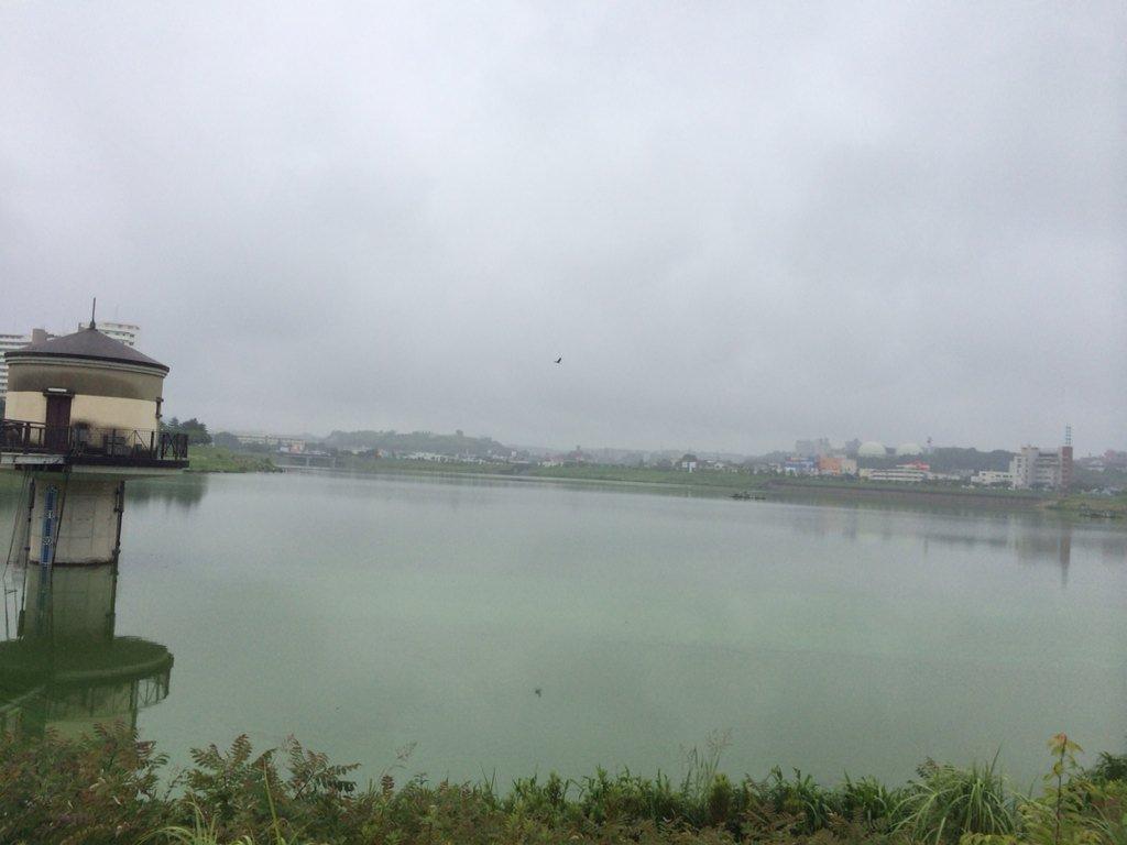 狭山池梅雨