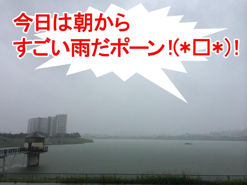 狭山池豪雨