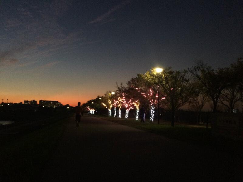 狭山池冬のイルミネーション試験点灯