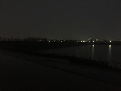 夜の雨が降る狭山池だポン
