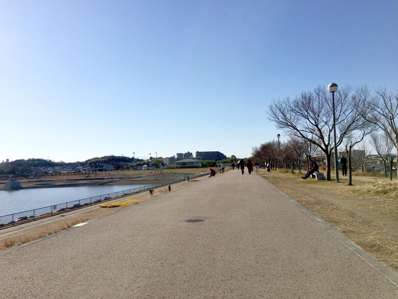 人がいっぱい散歩してるポーンo(^▽^)o