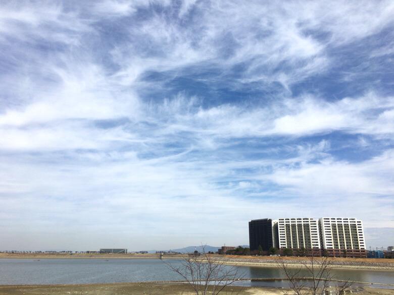 白い羽根のように、ふわ〜、ふわ〜とした雲だポン(*´ω`*)