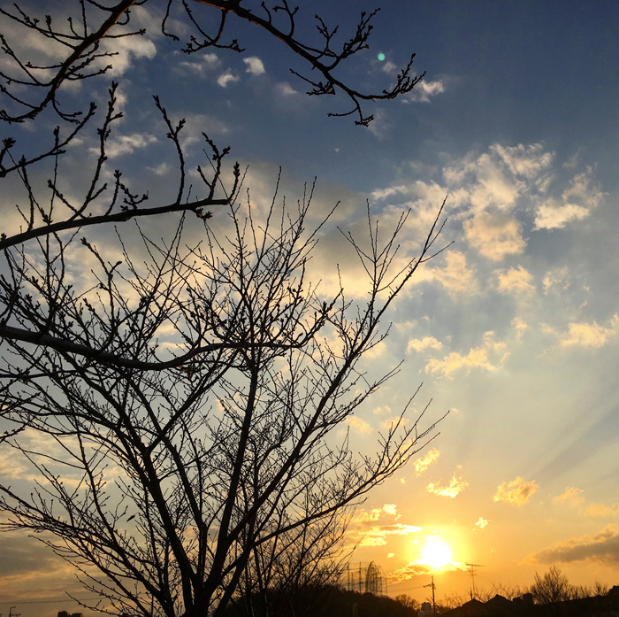 夕日が静かに沈むポン【2017年3月14日(火曜日)の狭山池】