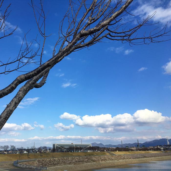2017年3月11日(土曜日)の狭山池