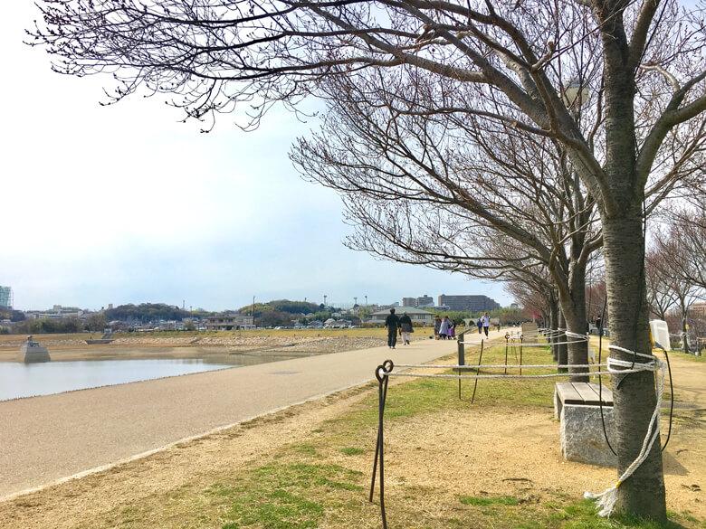 散歩日和だポン(*^ω^*)