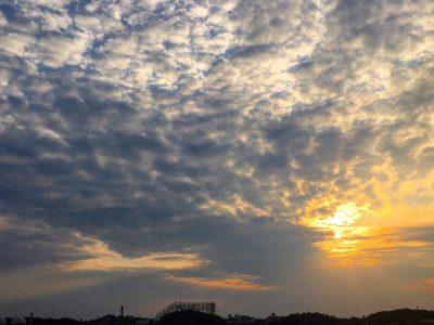 今日も狭山池の夕日が綺麗