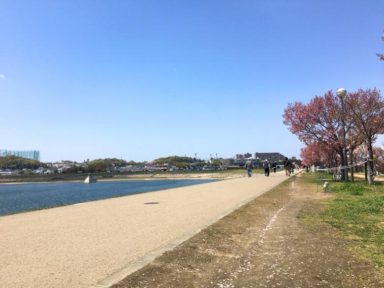 風ピューピューだけど、今日も、散歩してる人がいっぱいだポン(*^ω^*)
