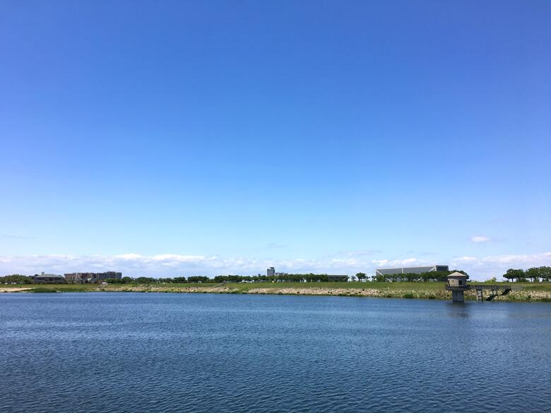 狭山池の青だポン☆