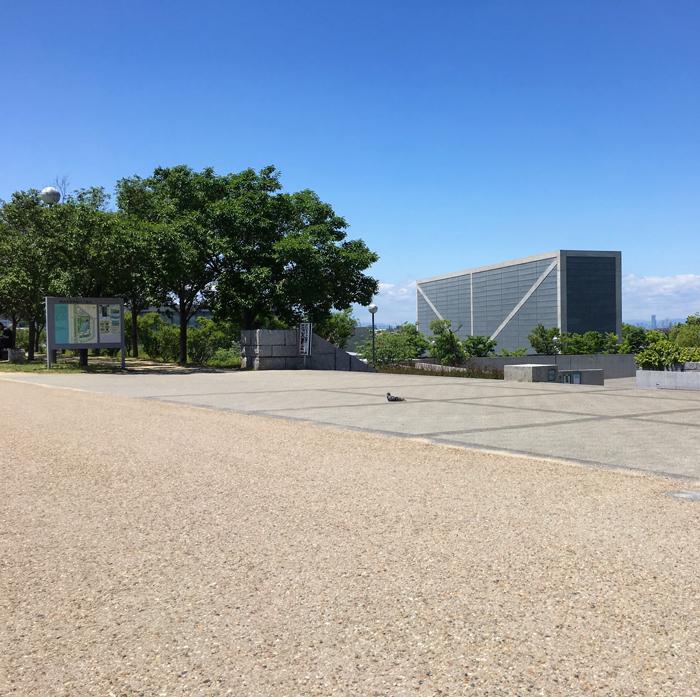 狭山池博物館とハト
