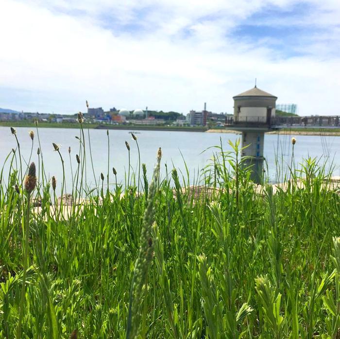 狭山池取水塔