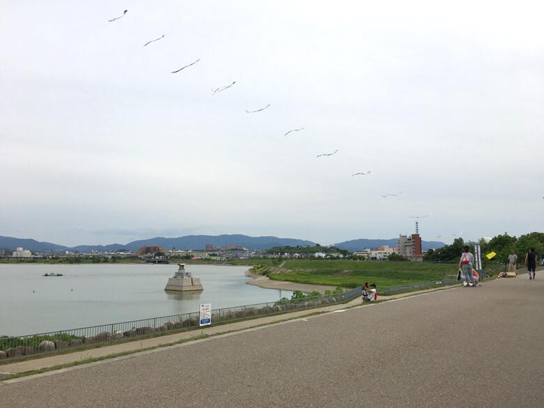 今日もいつもの場所で、凧あがってるポン☆