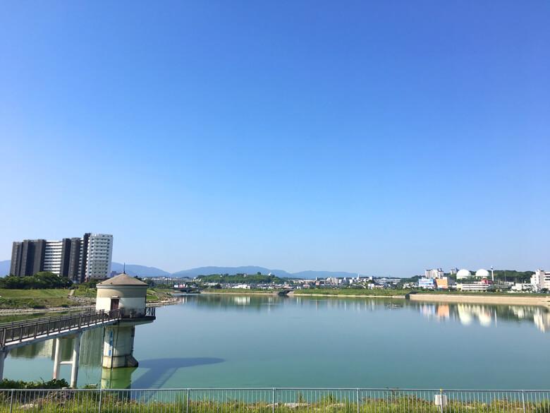 おはようだポーンo(^▽^)o 雲ひとつない青い空だポン☆