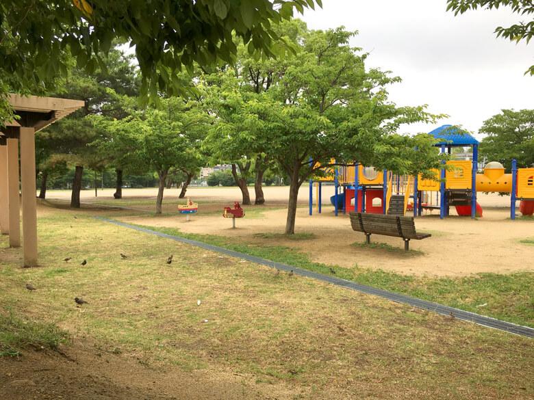 さやか公園、トリいっぱいだポン☆