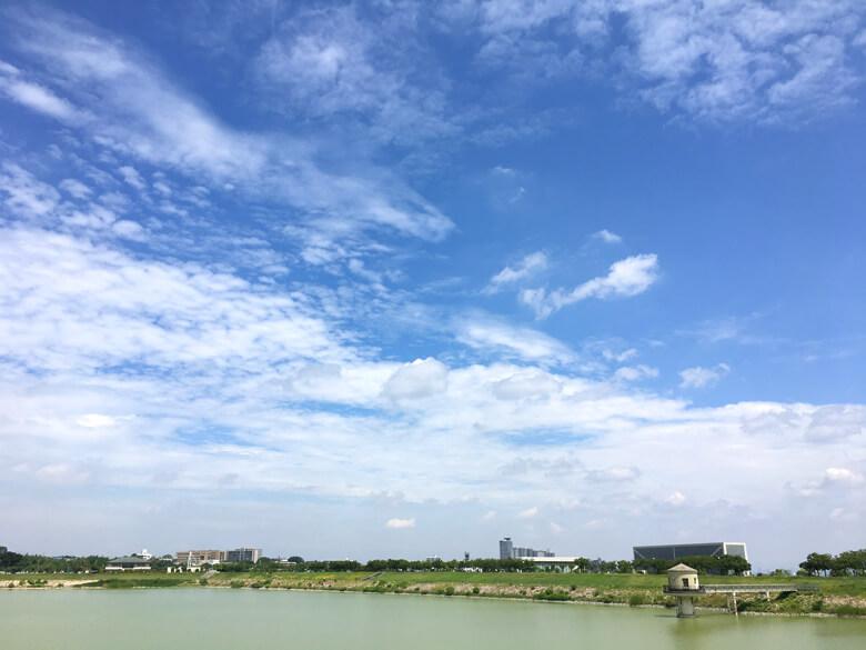 太陽ピカーン、いい天気だポン(*^ω^*)