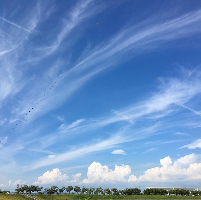 狭山池の青空と凧