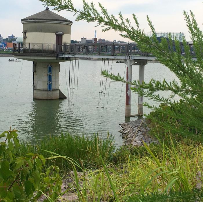 狭山池の貯水塔とサギ