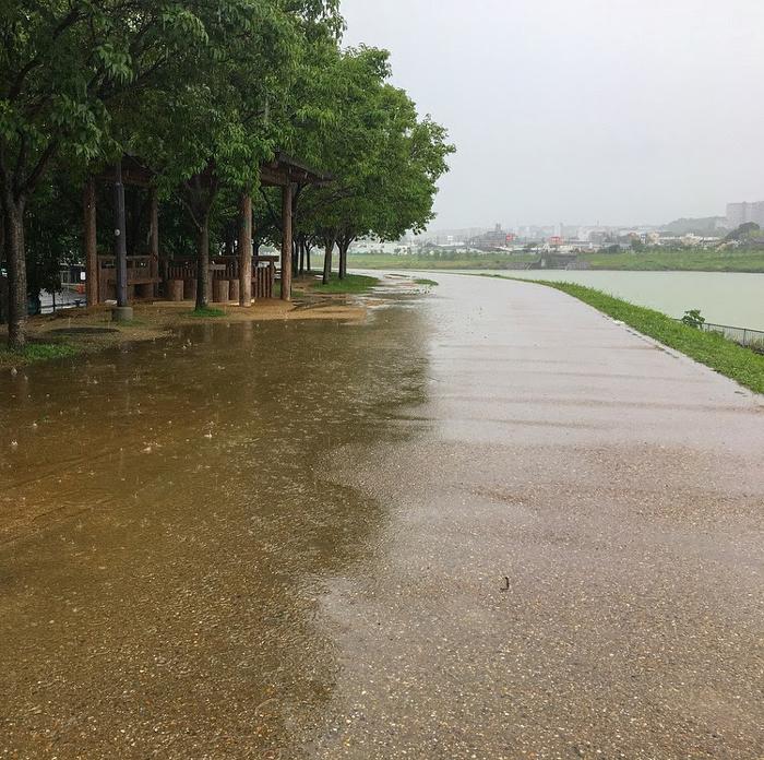 狭山池激しい雨