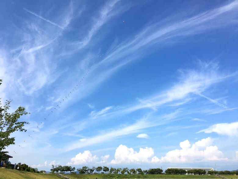 雲、ふわふわ〜♪もこもこ〜♪だポン☆ 凧、空高くのぼってるポン~(*^ω^*)