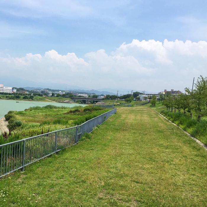 狭山池の緑