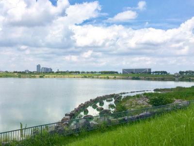 狭山池と青空