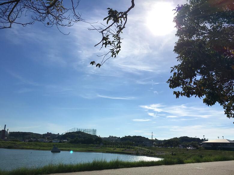 太陽ピカーン☆今日もジリジリ暑いポン~(´ω`;) 木かげで休憩だポン☆