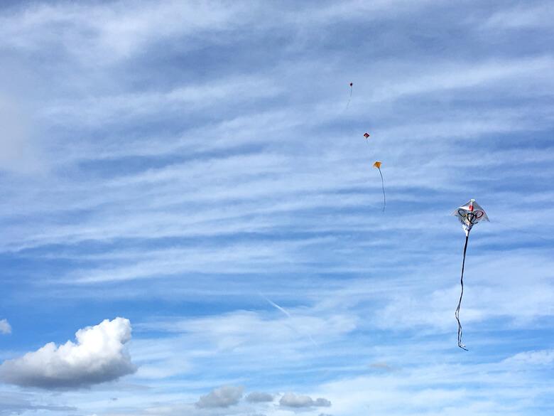 狭山池連凧オリンピック