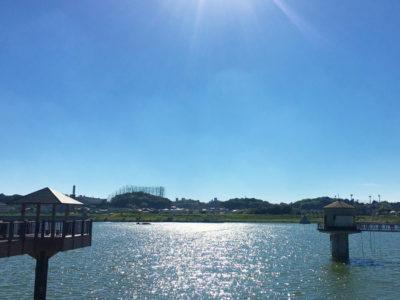 狭山池夏の日差し