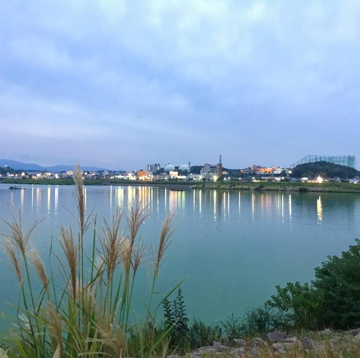 夜の狭山池とススキ