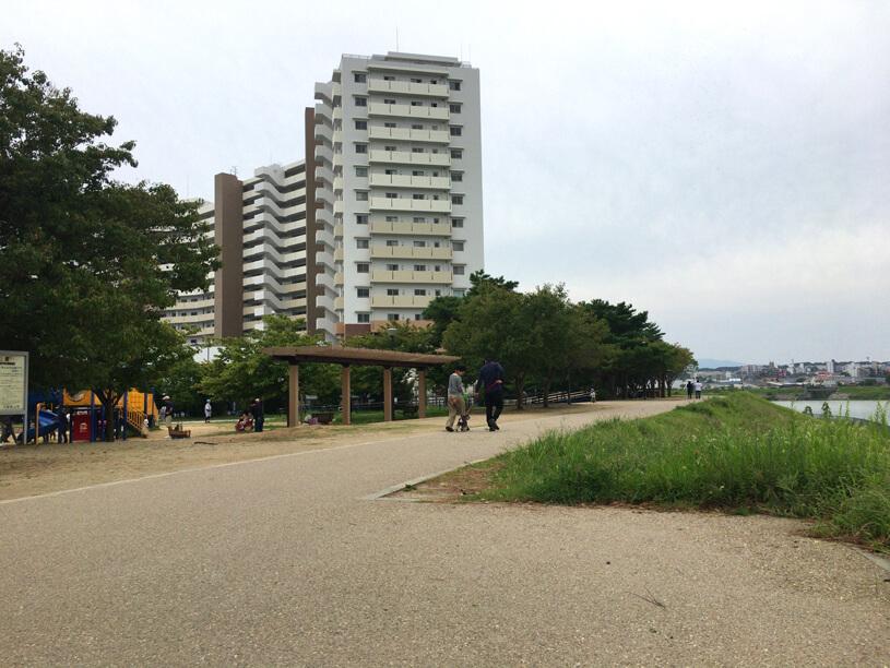 さやか公園、親子がいっぱいだポン☆ みんな楽しそうだポーン♪(*゚▽゚*)