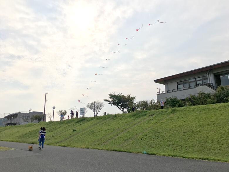 凧、ユラユラ~♪だポン☆