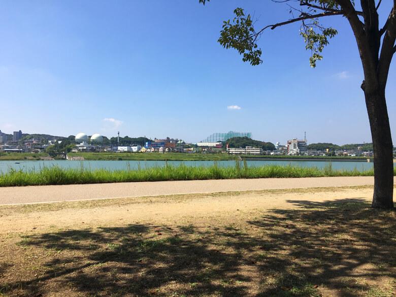 太陽ピカーン☆ 木かげで、休憩だポン〜♪(*´ω`*)