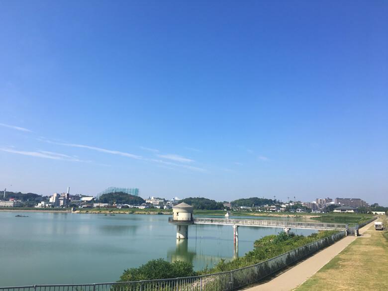 今日も太陽ピカーン☆ いい天気だポン(*^ω^*)