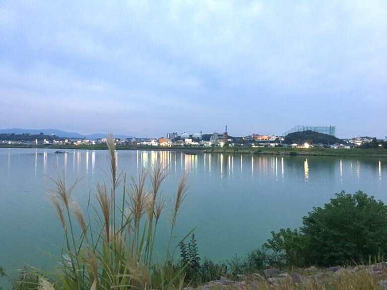 キラキラ狭山池に、ススキがポン☆