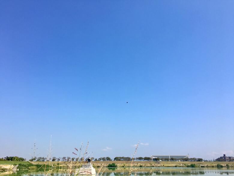 狭山池の空に、ツバメが元気にビューン♪だポンo(^▽^)o