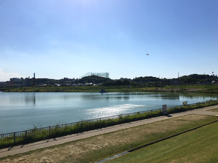 狭山池、キラキラ〜☆ポン(*^ω^*)