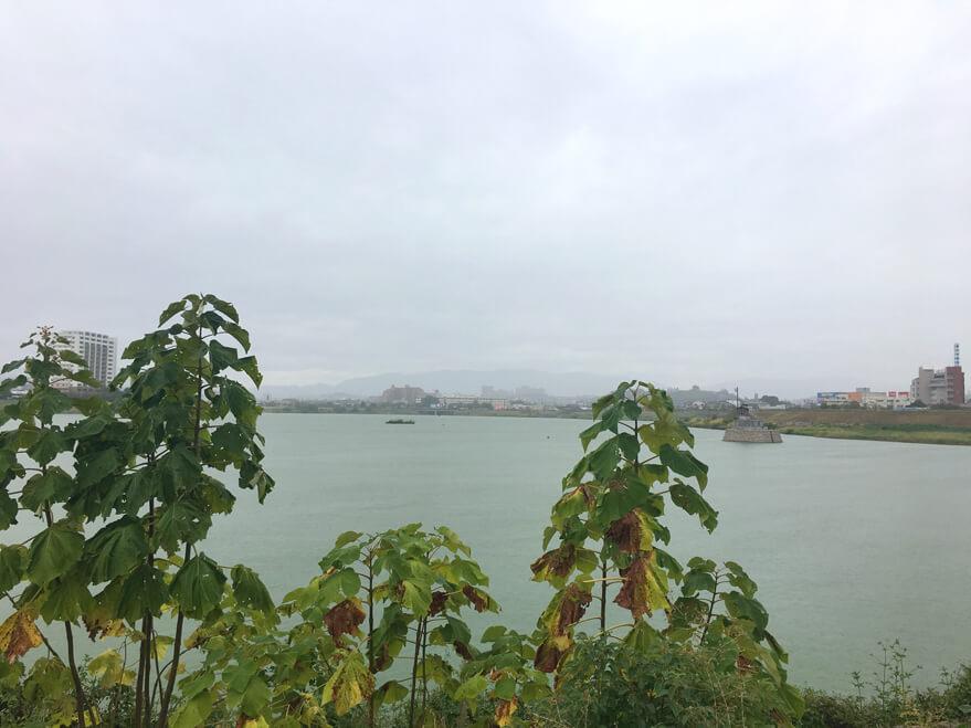 雨ふってるポンよ〜☆