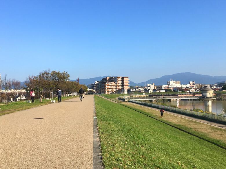 たくさんのみんな、散歩だポーン♪(*゚▽゚*)