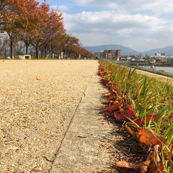 狭山池の秋の道