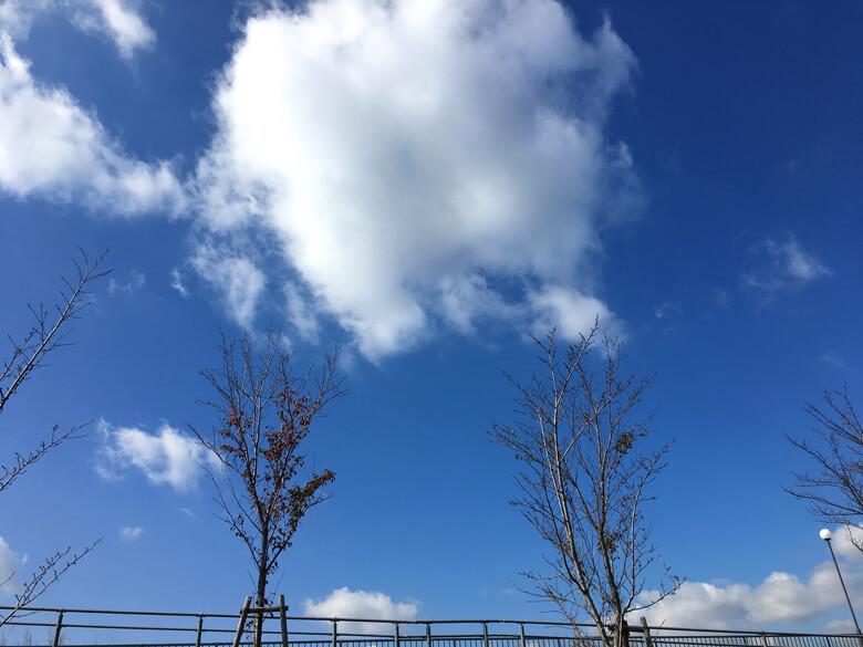 コロコロ雲みっけだポン♪(*゚▽゚*)♪