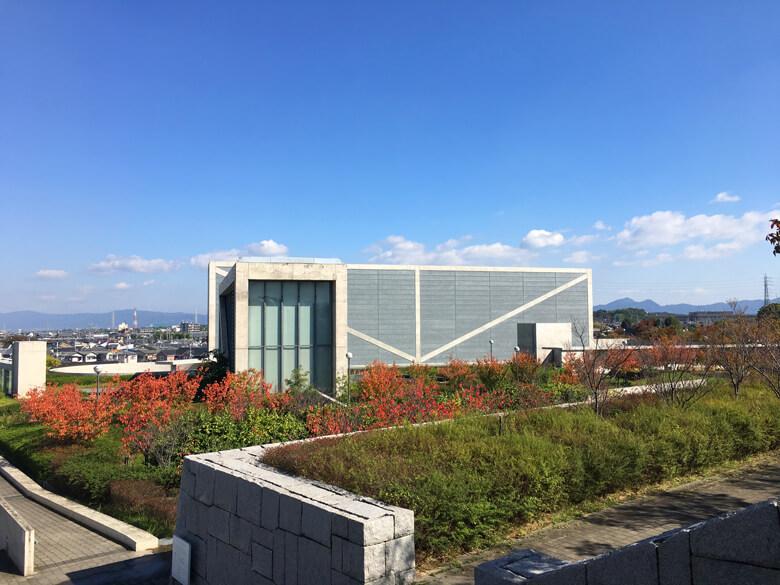 青い空、風そよそよ〜♪ いい天気だポン(*^ω^*)