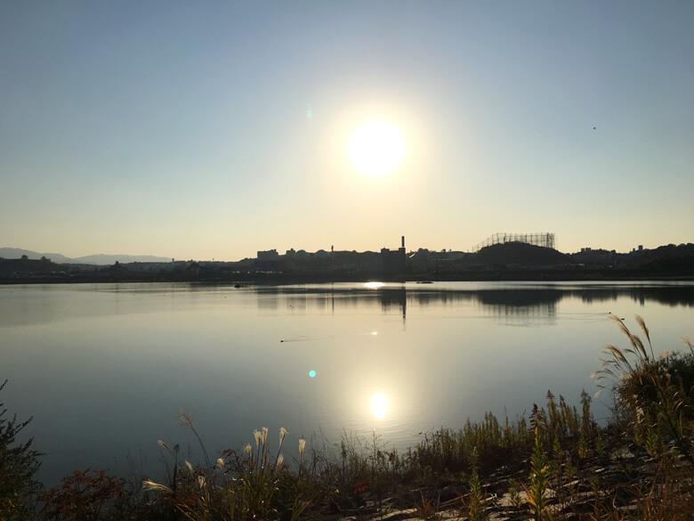 太陽ピカーン☆ 水面からもピカーン☆ まぶしいポン(๑>◡