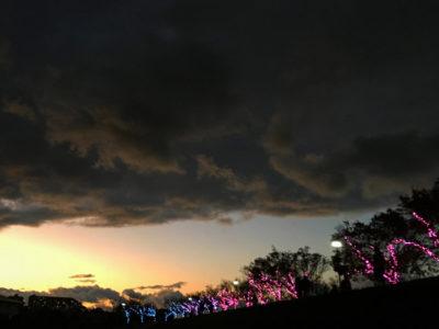狭山池のイルミネーションと雲