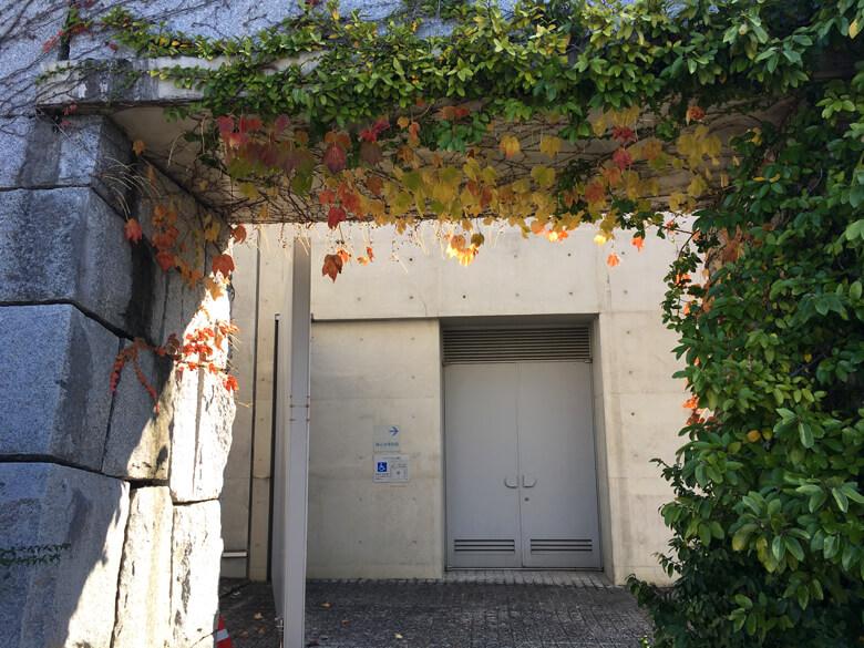秋色の葉っぱ ゆれゆれ〜♪ ポポ〜☆ かわいいポ〜ン♡