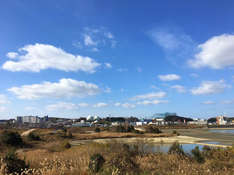 太陽ピカーン☆ いい天気だポン(*^ω^*)