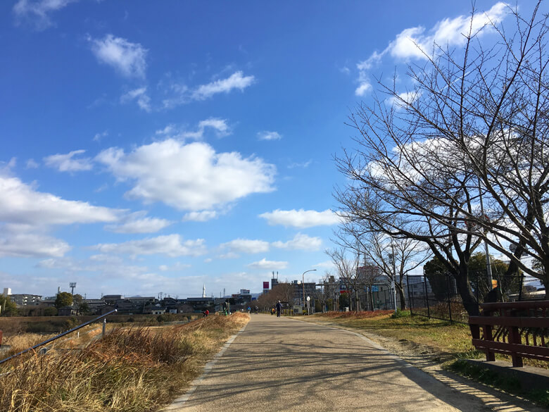 散歩してる人♬ 走ってる人♬ いっぱいだポーンヽ(*^ω^*)ノ