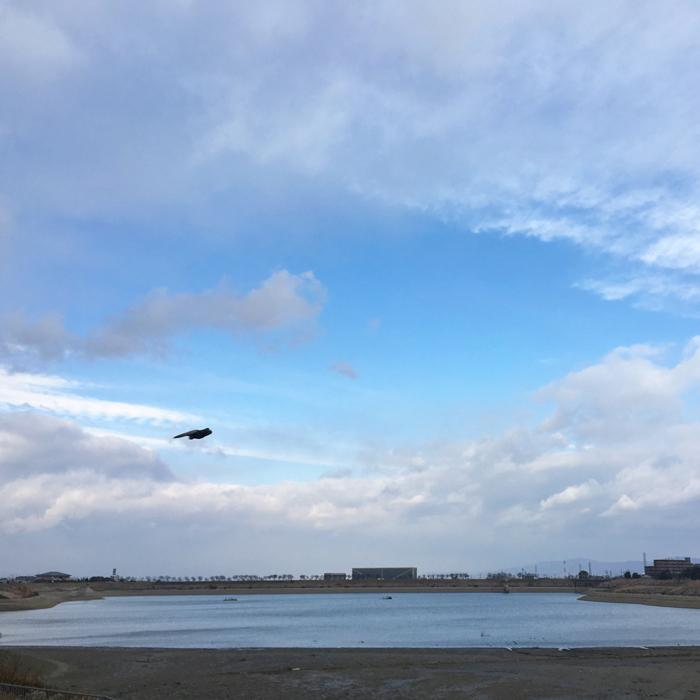 狭山池の鳥高速