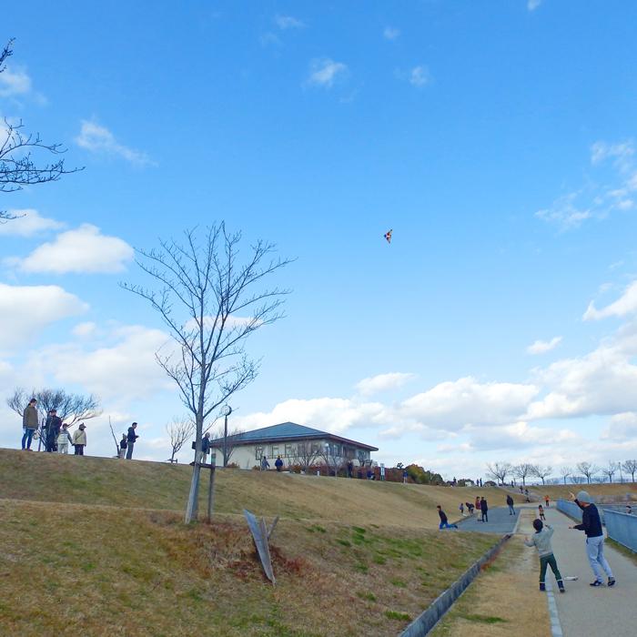 お正月狭山池の凧揚げ
