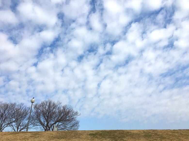 今日は、もこもこ雲だポーン☆